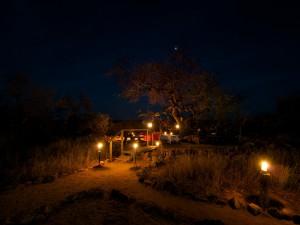 The romantic Marula Tree Boma