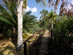 Tremisana garden